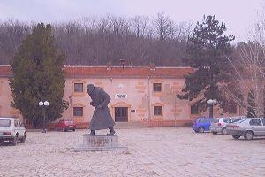 Privatni domovi za stare - Gadzin Han