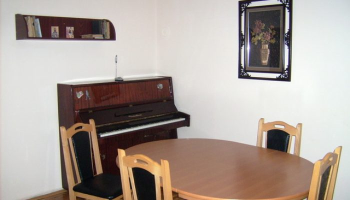 Dom za stare Kostic - 4